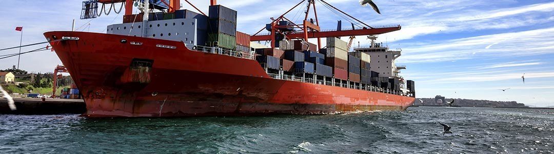 What is Behind Shreyas Shipping and Logistics Limited's (NSE:SHREYAS) Superior ROE? – Simply Wall St News
