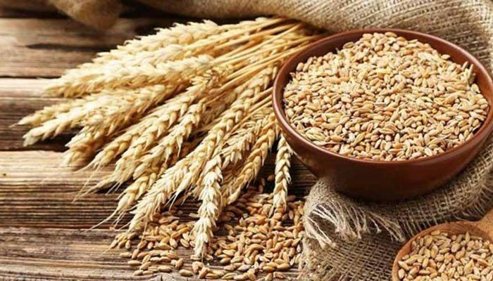 ECC told provinces yet to fulfill wheat procurement target for the year